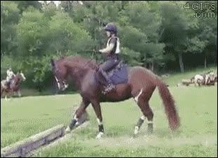 Enlace a Algunos caballos tienen ciertas dificultades para calcular distancias