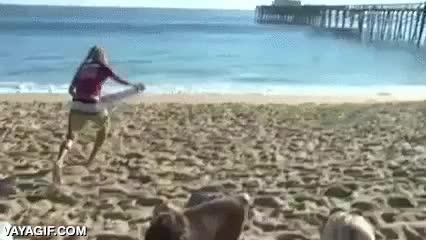 Enlace a Oh no, no quiero perderme esa ola, pero estoy en la orilla... ¡Ya sé!