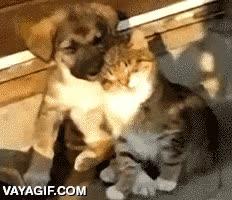 Enlace a ''Perdona, me voy a echar un rato.'' ''¡Vale, pues yo también!''