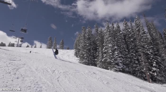 Enlace a Creo que alguien tendría que decirle que el ski consiste en deslizarse SOBRE la nieve