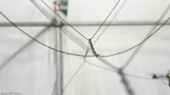 Enlace a En un futuro, con solo dos drones será posible construir un puente de cuerda