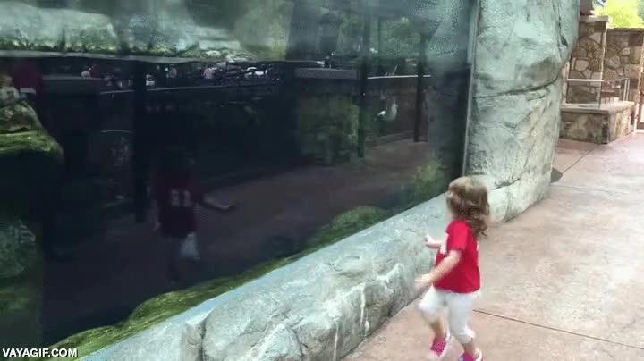 Enlace a Parece que esta niña ha encontrado un curioso compañero de juegos