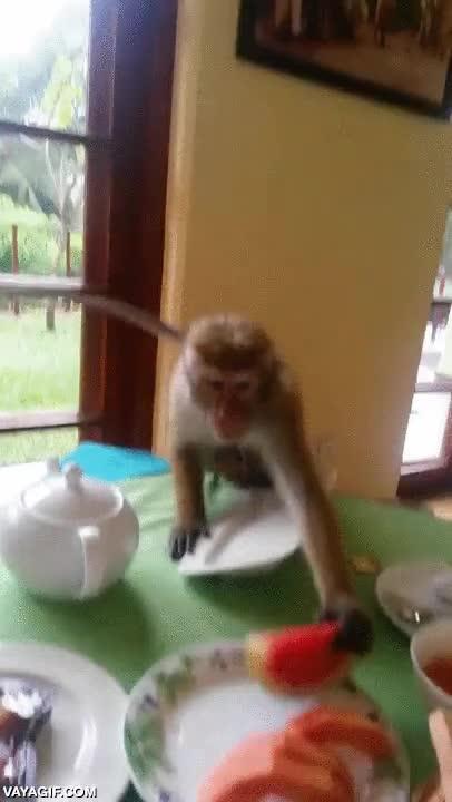 Enlace a Cuando has acabado de desayunar en el buffet libre y no hay ningún camarero cerca...