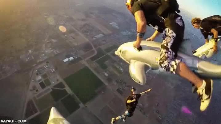 Enlace a ¿Saltar en paracaídas montados en delfines hinchables? ¿Por qué no?