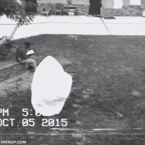 Enlace a Hombre sale despavorido al ver un fantasma, hasta que recuerda sus habilidades de pressing catch