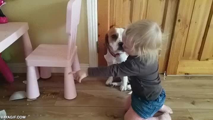Enlace a Este pequeñín tira su comida al suelo y abraza a su perro como si intentase consolarlo