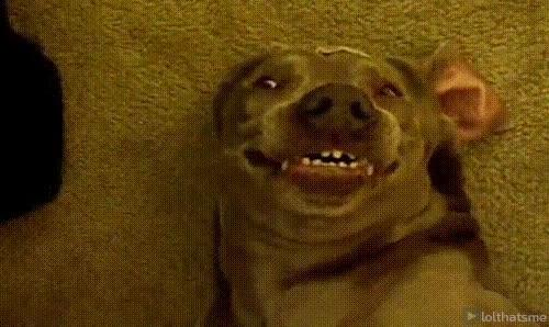 Enlace a Sonríe para la foto