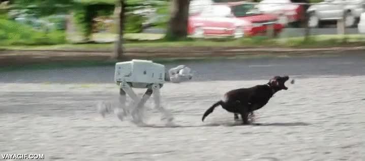 Enlace a Así son los cachorros de AT-AT
