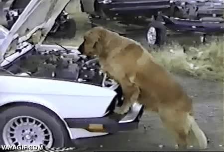 Enlace a Así me debe ver el tío de la grúa cuando viene a remolcar mi coche por una avería