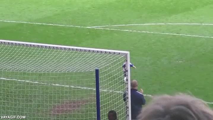 Enlace a Este pequeño ha descubierto el subidón de marcar un gol ante toda una multitud