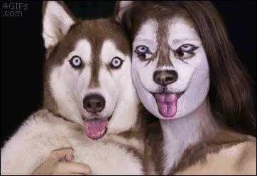 Enlace a El maquillaje más perturbador caninamente hablando