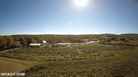 Enlace a Un dron atacado por una calabaza voladora a 320 km/h