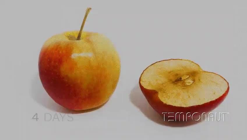 Enlace a Timelapse de manzanas descomponiéndose naturalmente