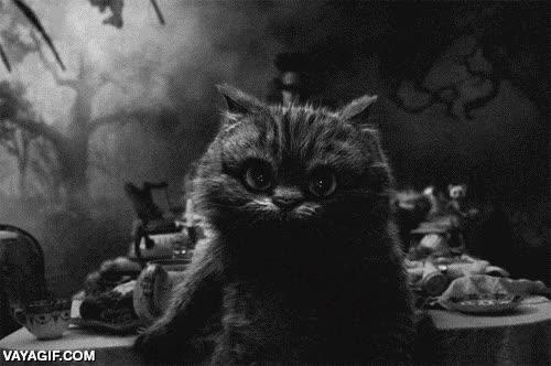 Enlace a El arte de esfumarse a la francesa como el gato de Cheshire