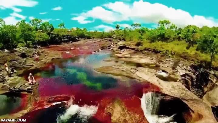 Enlace a Esto es Caño Cristales, una maravilla cromática de la naturaleza