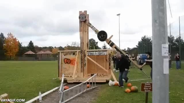 Enlace a Tengo al típico marido que construye catapultas como hobby, lo normal