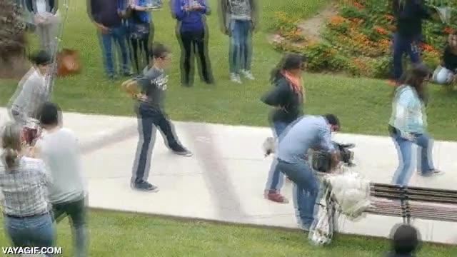 Enlace a Un bulldog skater pasando bajo las piernas de varias personas, ya lo he visto todo
