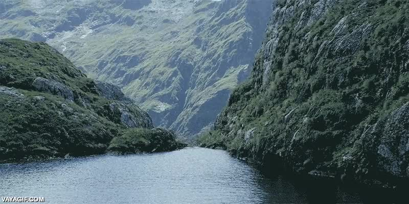 Enlace a Asomándote al abismo de Nueva Zelanda