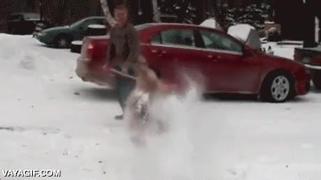 Enlace a La primera nevada del año ha vuelto loco a este corgi