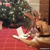 Enlace a Algunos ya han enviado su carta a Papá Noel, ¿y tú?