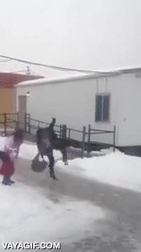 Enlace a Con el pavimento helado, esta chica demuestra tener un sentido del equilibrio increíble