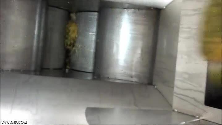 Enlace a Por si alguna vez te has preguntado cómo se hace el zumo de piña a nivel industrial