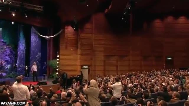 Enlace a Un pájaro robot volando grácilmente dentro de un auditorio