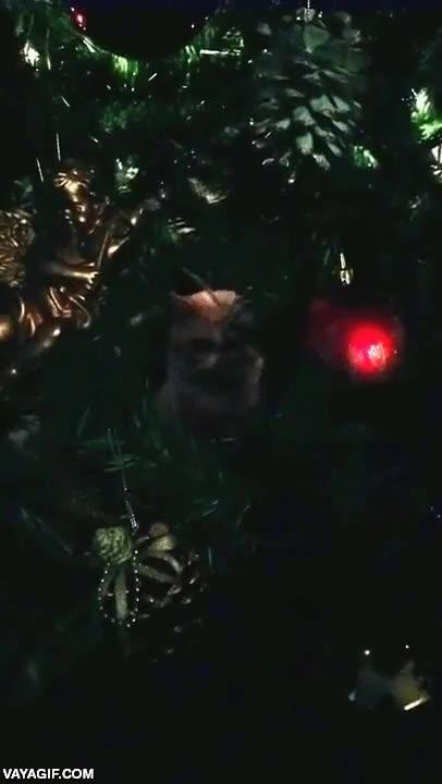 Enlace a Creo que alguien odia desde lo más profundo tu espíritu navideño