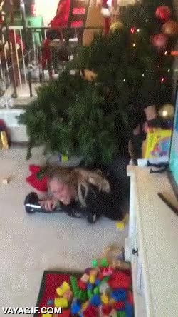 Enlace a ¡Qué grandes ideas navideñas tienen en esta familia!