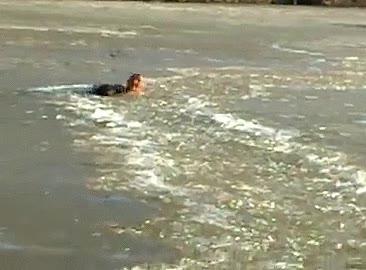 Enlace a Un hombre valiente sin miedo al frío salva a su perro de este lago helado