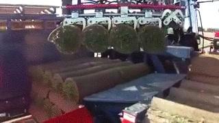 Enlace a ¿Alguna vez te has preguntado como se hacen esos rollos de césped natural?