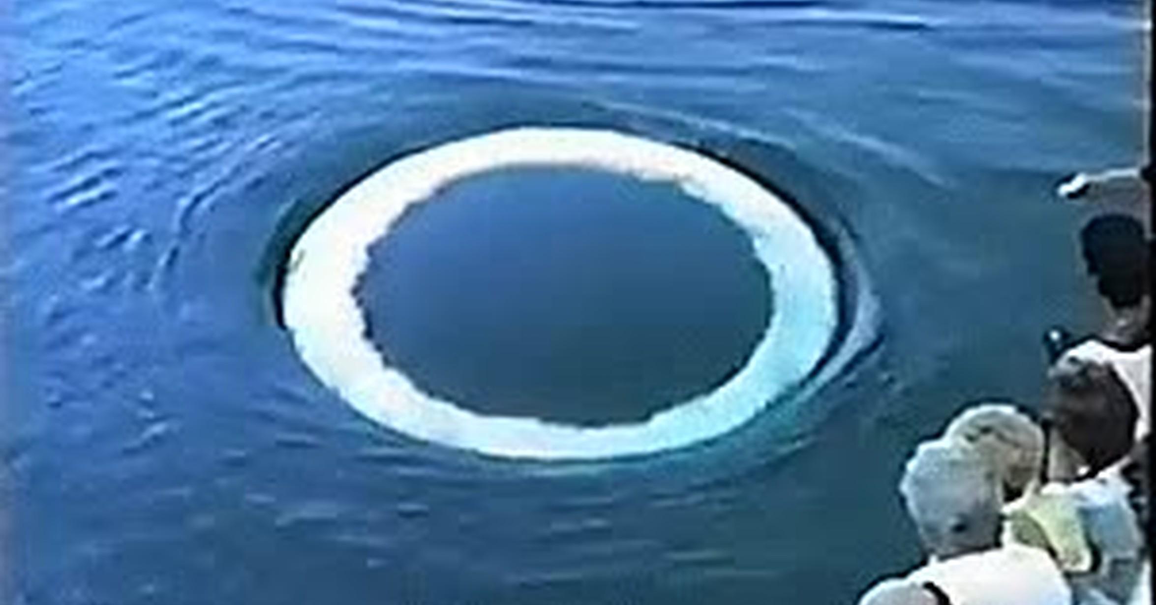 Vaya gif la ballena jorobada lanza anillos for Pintura para estanques de peces