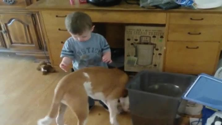 Enlace a ¡Mami, déjame ayudar a dar de comer al perrito!