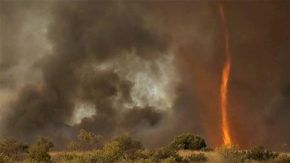 Enlace a Los tornados de fuego existen. La naturaleza en su forma más terrorífica