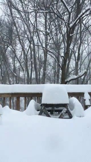 Enlace a Time-lapse de la gran nevada de este fin de semana en los Estados Unidos