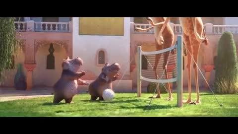 Enlace a Al final lo de jugar a volleyball contra dos jirafas no es tan divertido como pensaba...