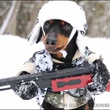 Enlace a La patrulla canina ya está entre nosotros, abandonad toda esperanza.