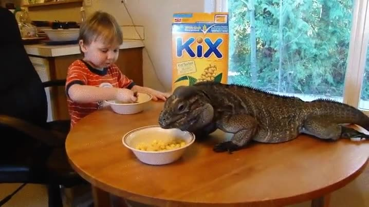 Enlace a Desayunando con tu mejor amigo