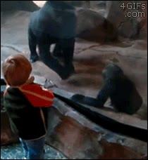 Enlace a Hijo, te he dicho mil veces que no te pelees con humanos