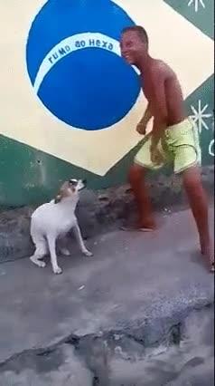 Enlace a Definitivamente en Brasil tienen el ritmo en el cuerpo
