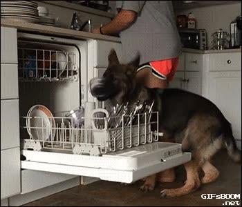 Enlace a Ayudando con el lavaplatos