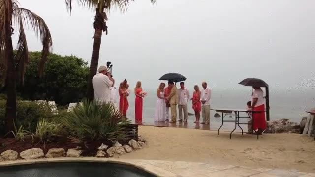 Enlace a Si alguien se opone a esta boda que hable ahora o calle para siempre