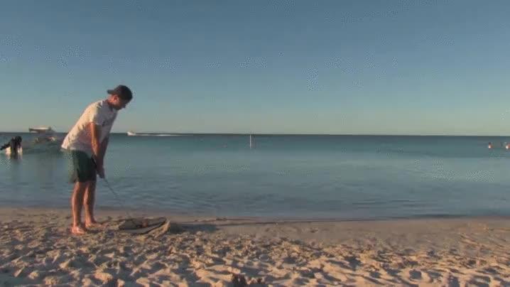 Enlace a El Tiger Woods del golf acuático