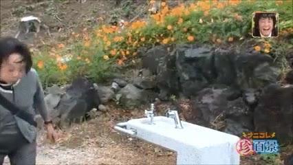 Enlace a Broma pesada en una fuente de Japón. Hay que tener mala leche