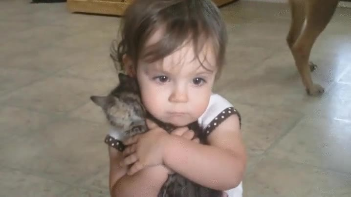 Enlace a Si tienes corazón te emocionarás con la despedida de esta niña y su gato