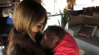 Enlace a Hasta los monos han tenido que aprender a ahuyentar a los buitres que intentan ligar con tu novia