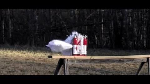 Enlace a Lo que pasa cuando disparas a varios extintores