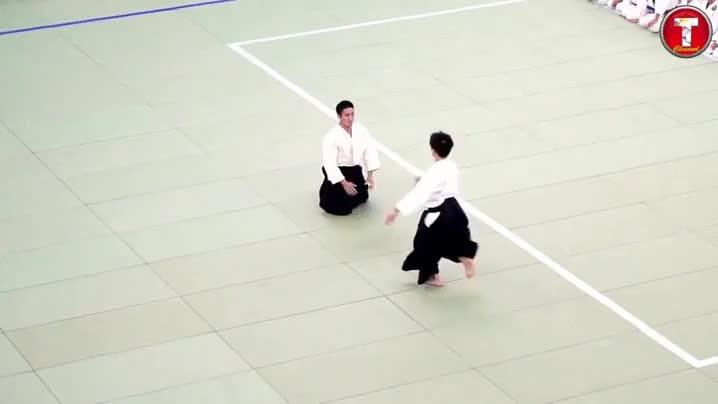 Enlace a No quieras pelear nunca con un maestro del Aikido