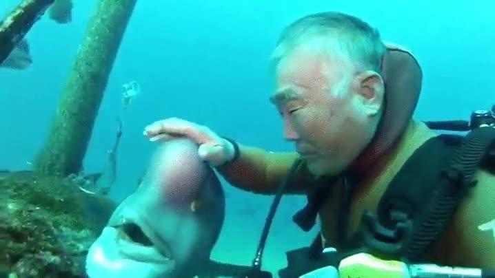 Enlace a Un abuelete y un pez llevan más de 25 años dándonse carantoñas cada día