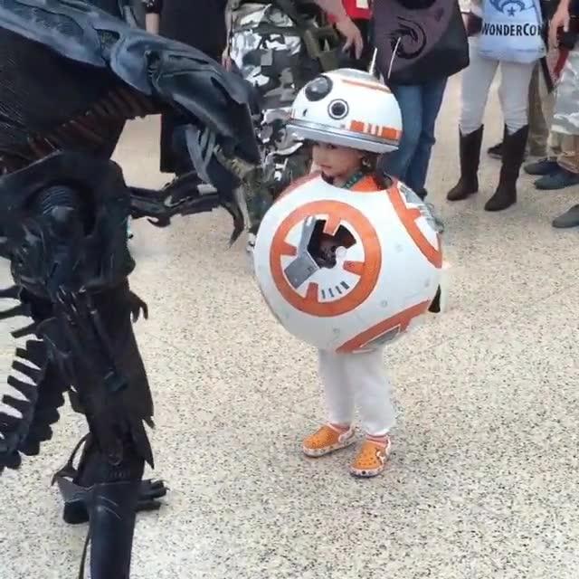 Enlace a  La reacción de un niño disfrazado de BB-8 cuando se encuentra con un Alien